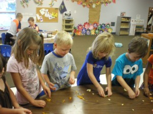 Separating the pumpkin seeds from the mush